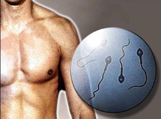 Hombres Infértiles Tienen Mayor Riesgo De Diabetes Y  Osteoporosis
