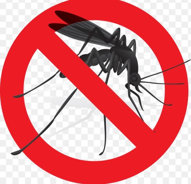 Medidas para prevenir picaduras de mosquitos.